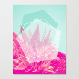 Aloe Veradream Canvas Print