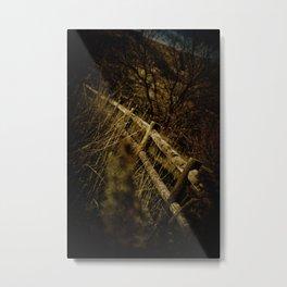 Fences Metal Print