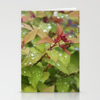 drink Stationery Cards featuring Drink by Kim Hawley