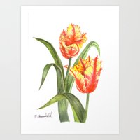 Yellow Parrot Tulips Art Print