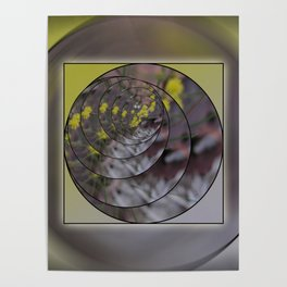 Wattle in the Round Poster