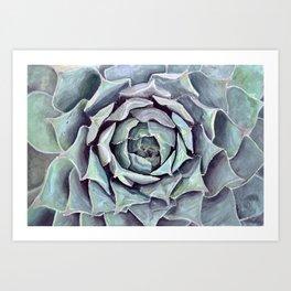 Succulent Painting Art Print