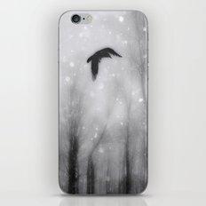 As The Crow Flies iPhone & iPod Skin