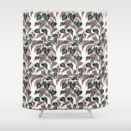 Pink and Green indoor Plant Caladium - home decor Shower Curtain