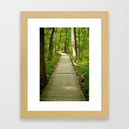 Forest Boardwalk Framed Art Print