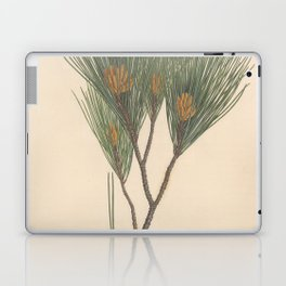 Botanical Pine Laptop & iPad Skin