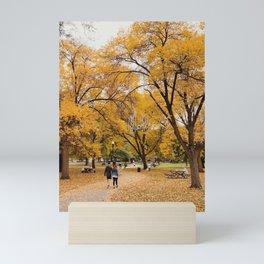 Schiller Park (fall 2020) Mini Art Print