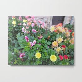 Flowers in St. Andrews Metal Print