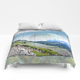 PLANETARY COMPANION Comforters