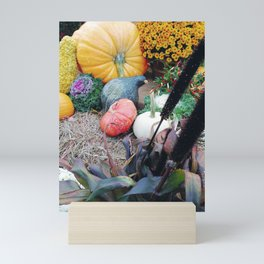Freshly picked assortment of fall pumpkins, gourds, Autumn Decorations Mini Art Print