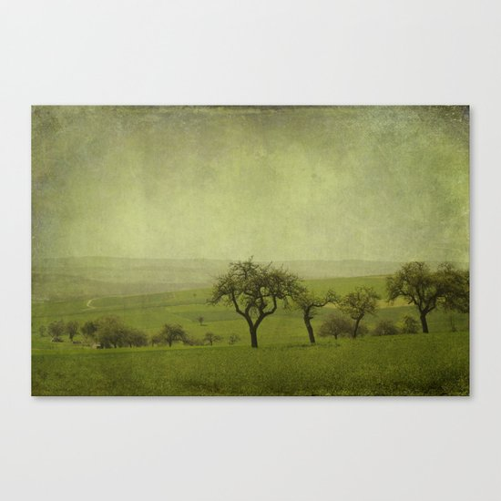 fields and apple trees Canvas Print