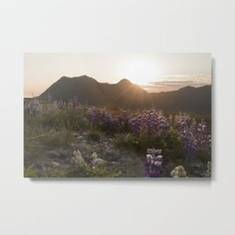 Three Sisters Sunset Photography Print Metal Print