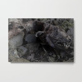 Remains of a Bygone Predator, Decay Metal Print