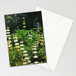 Lupine Garden Stationery Cards