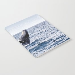 Humpback Whale Ocean Notebook