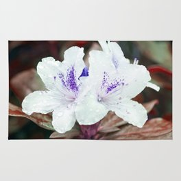 WHITE BLOSSOM - Rhododendron Rug