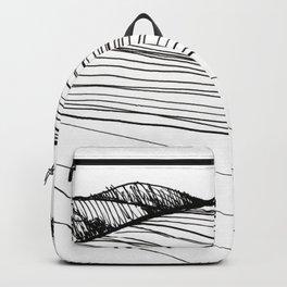 Harmonic Fields Backpack