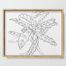 PLANT PORTRAITS - CALATHEA LANCIFOLIA - COOPER  AND COLLEEN Serving Tray