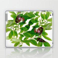 Blueberry Branch in Spring Laptop & iPad Skin