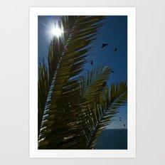 Sunny palms Art Print