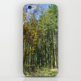 Colorful French forest iPhone Skin