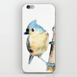 Tufted Titmouse by Teresa Thompson iPhone Skin
