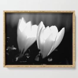 You Two - Crocus Flowers Black And White Serving Tray