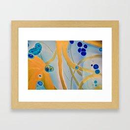 Streamer III Framed Art Print