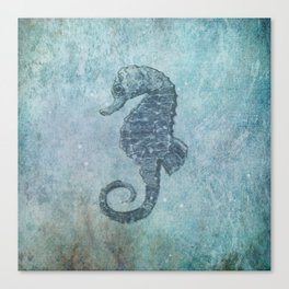 sea & horse Canvas Print
