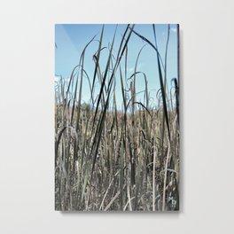 In the fields Metal Print