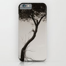 How's the Serenity? iPhone 6s Slim Case