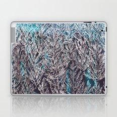 Snow Pines(Blue) Laptop & iPad Skin