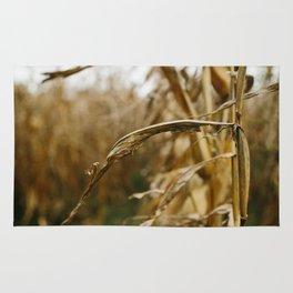 Autumn Cornstalk I Rug