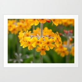 Yellow Botanical Art Print