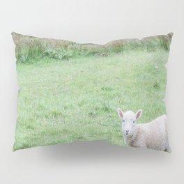 'Sup - Lamb in New Zealand Pillow Sham