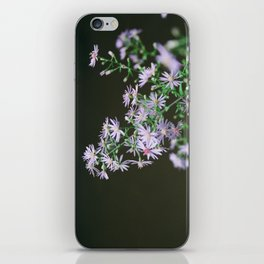 watkins glen aster iPhone Skin
