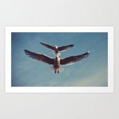 Gulls {Eight} Art Print