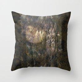 Badlands II Throw Pillow