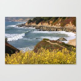 California Coast Overlook Canvas Print