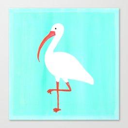Tropical Ibis Canvas Print