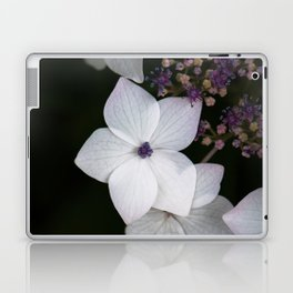 Purple and Blue Hydrangea Laptop & iPad Skin