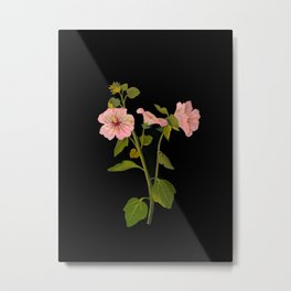 Lavatera Trimestris Mary Delany Delicate Paper Flower Collage Black Background Floral Botanical Metal Print