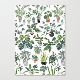 plants and pots pattern Canvas Print