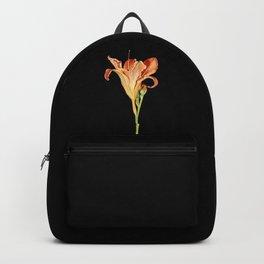 Orange Daylily Illustration Backpack