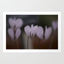 pinkness Art Print