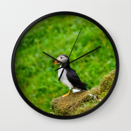 The Puffins of Mykines in the Faroe Islands I Wall Clock