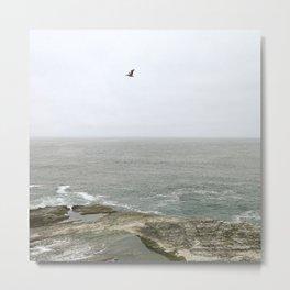 California Coast Bird Metal Print