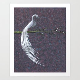Monu Bird Art Print