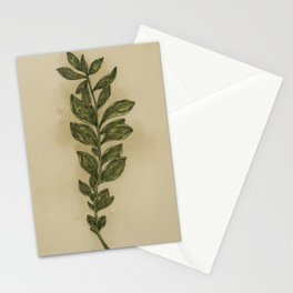 Oregano Stationery Cards