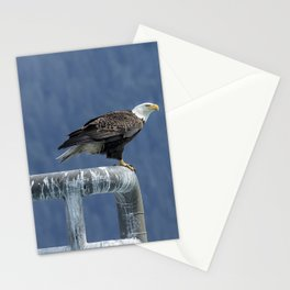 Bald Eagle of Resurrection Bay, No. 3 Stationery Cards